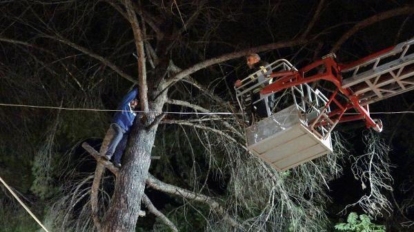 Türbülansa kapılıp, ağaca iniş yapan yamaç paraşütçüsünü itfaiye kurtardı - Sayfa 2