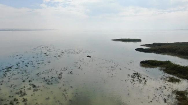 Uluabat Gölü can çekişiyor! En derin yeri 1,5 metre! - Sayfa 1