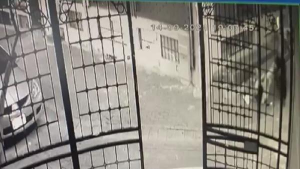 Zeytinburnu'nda kadın cinayeti kamerada - Sayfa 4