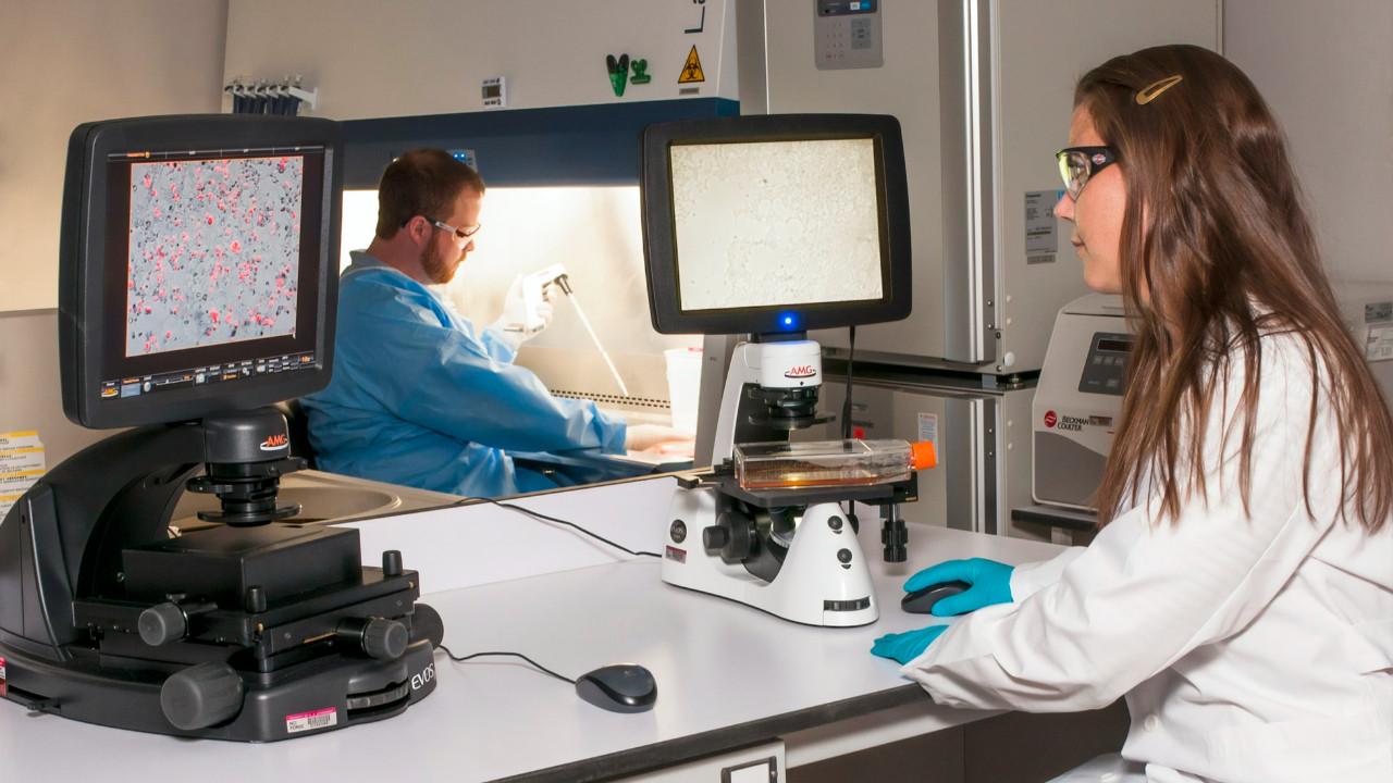 MEB, PCR testinde kapsamı genişletti