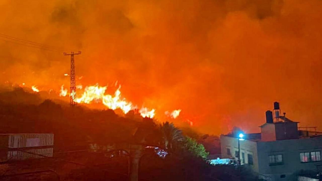 İsrail, orman yangınlarıyla mücadele ediyor