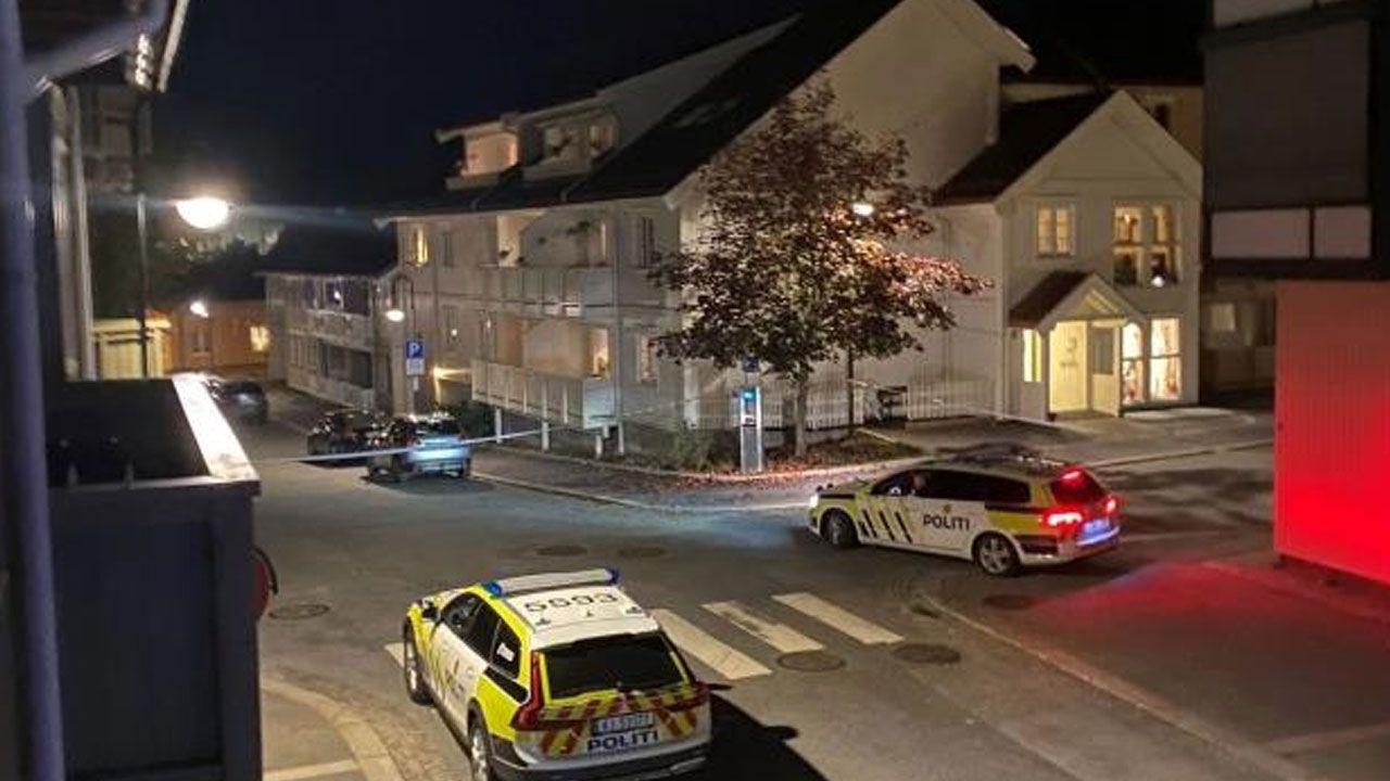 Norveç'te oklu saldırı: Çok sayıda kişi hayatını kaybetti - Sayfa 4