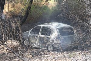 Bu kaza orman yangınına yol açtı