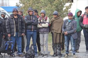 Iğdır'da göçmen kaçakçılığı: 52 gözaltı