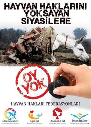 Hayvan haklarını yok sayana oy yok