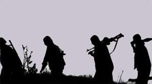 1 PKK'lı yakalandı