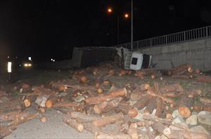 Odun yüklü kamyon freni patlayarak devrildi: 1 yaralı
