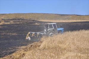 Sorgun'da bin dönümlük hububat alanı yandı