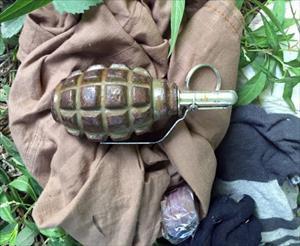 Diyarbakır'da 4 adet el bombası ele geçirildi