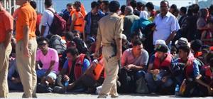 Ayvalık'ta 412 kaçak göçmen yakalandı