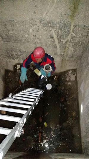 Sulama kanalına düşen yavru köpeği itfaiye kurtardı