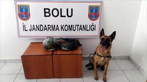 Bolu'da 3 otobüste uyuşturucu ve kaçak sigara ele geçirildi