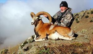 Bir koyun avlamak için 90 bin lira ödedi