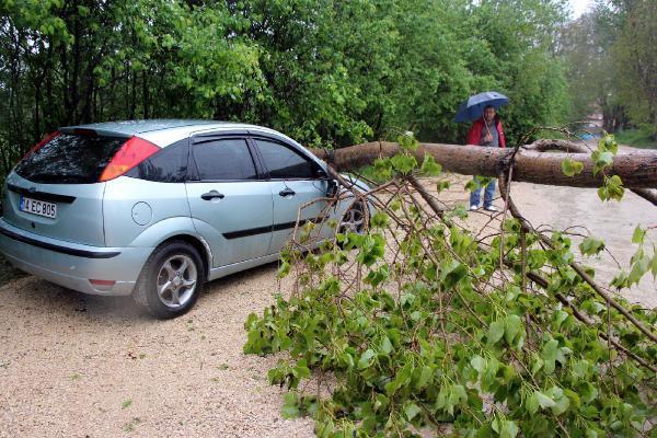Bolu'da ağaçlar devrildi, çatı uçtu, apartmana yıldırım düştü
