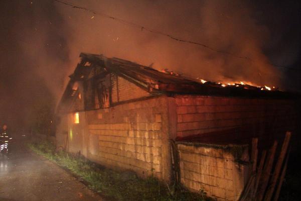 Yangından kurtardıkları hayvanları yolun üzerinde kestiler