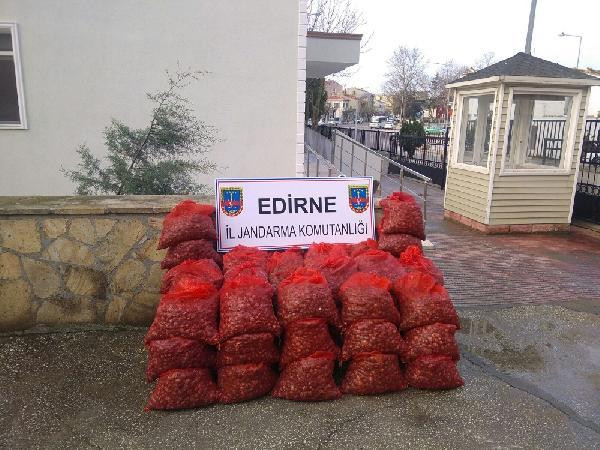 Enez'de 1 ton 450 kilo kaçak midye ele geçirildi
