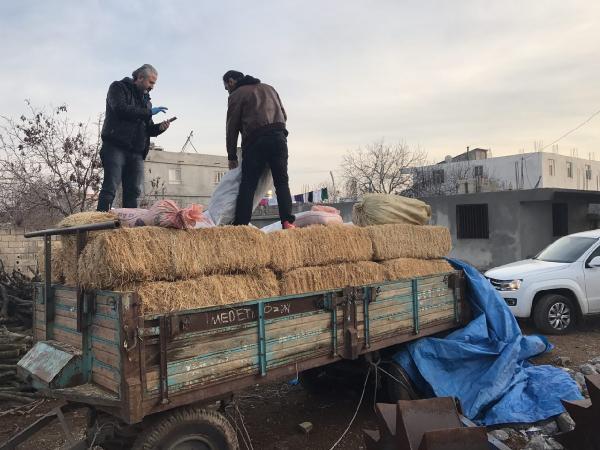 Traktör römorkundaki samanların arasında 345 kilo esrar