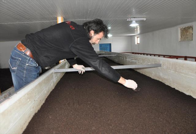 Haberden etkilenerek, solucan gübresi üretim tesisi kurdu