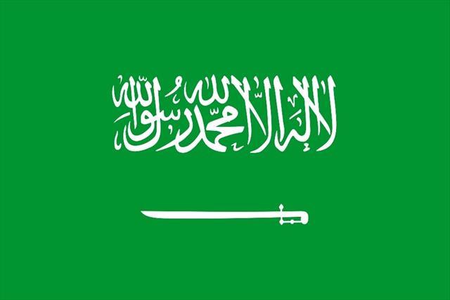 Suudi Arabistan İçişleri Bakanlığı: Kabe'ye terör saldırısı önlendi