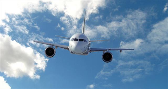 Pistteki ölü kuşlar nedeniyle uçaklar pisti pas geçti