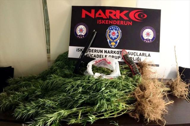 İskenderun'da uyuşturucu operasyonları: 7 gözaltı