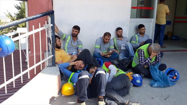 Hastanelere başvuranların sayısı: 1284 kişi