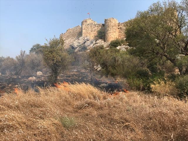 Kastabala Antik Kenti'nde orman yangın