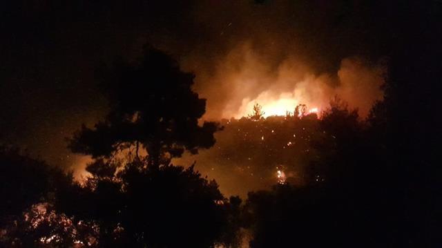 Antalya'da orman yangını: 4 mahalle tehdit altında