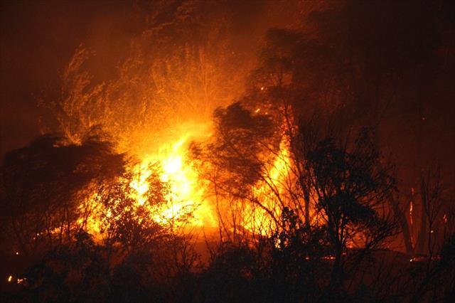 Antalya'da 10 hektarlık alan kül oldu