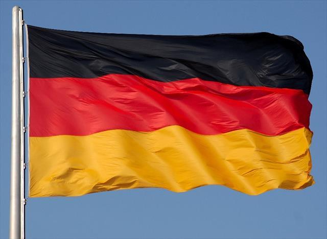 Alman istihbaratı ırkçı AfD partisini takibe aldı