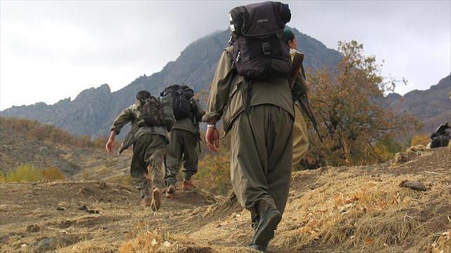 PKK'nın huzursuzluğu terörist ifadelerine yansıdı