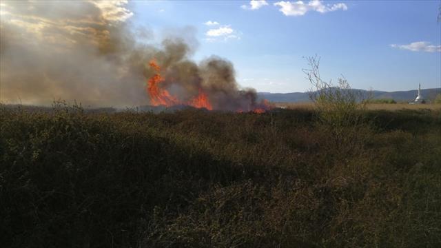 İznik Gölü kıyısında sazlık yangını