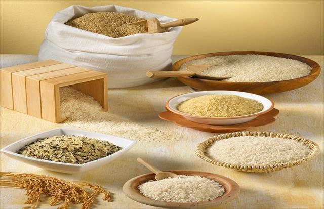Pirinç yaşlılığı yavaşlatıyor