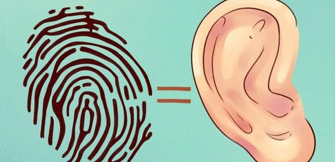 Kulaktaki bu bölgelere bastırırsanız...