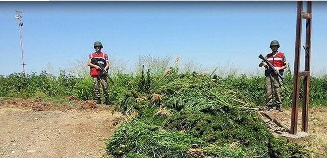 'PKK'nın en büyük kazancı uyuşturucudan'