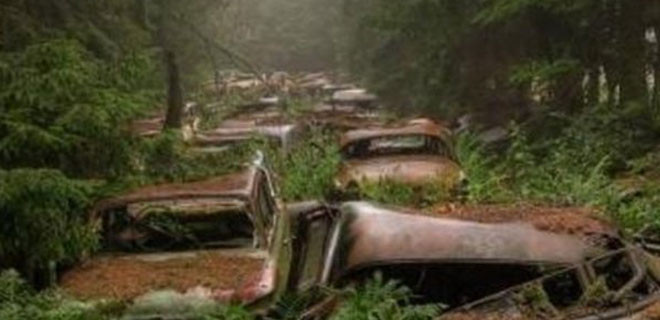Geri dönüp araçlarını alacaklardı ama...