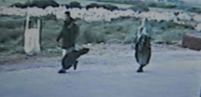 Akkol ve Adıyaman, sahilden 5 kilometre yürüyerek taksiye binmiş