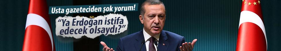 Ya Erdoğan istifa edecek olsaydı?
