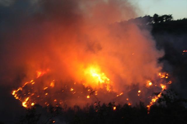 Saros'un akciğerlerinde yangın