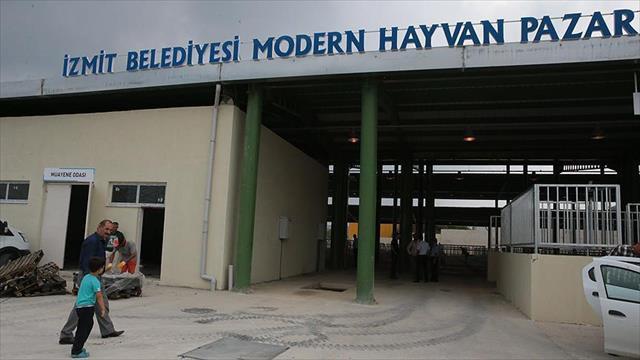 İstanbullular için İzmit'te alternatif kurbanlık pazarı