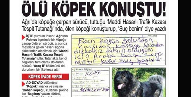 Ölü köpeğe tutanak tutturdu