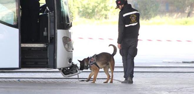 Özel eğitimli köpekle arama yapıldı