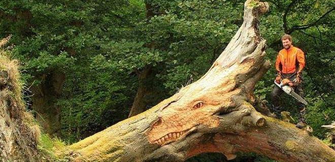 Ağaç deyip geçmeyin!