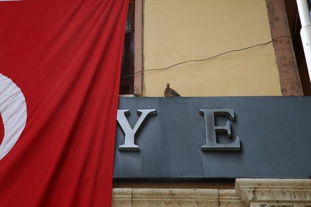 Kumrular Türk bayrağının gölgesine yuva kurdu