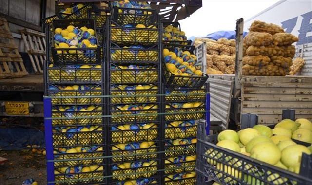 Türkiye'de yetişen sebze ve meyveler Irak piyasasının vazgeçilmezi