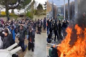Fransız polisi öğrencilere diz çöktürttü! Tepki büyük