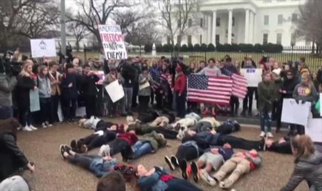 Beyaz Saray önünde silah yasası protestosu