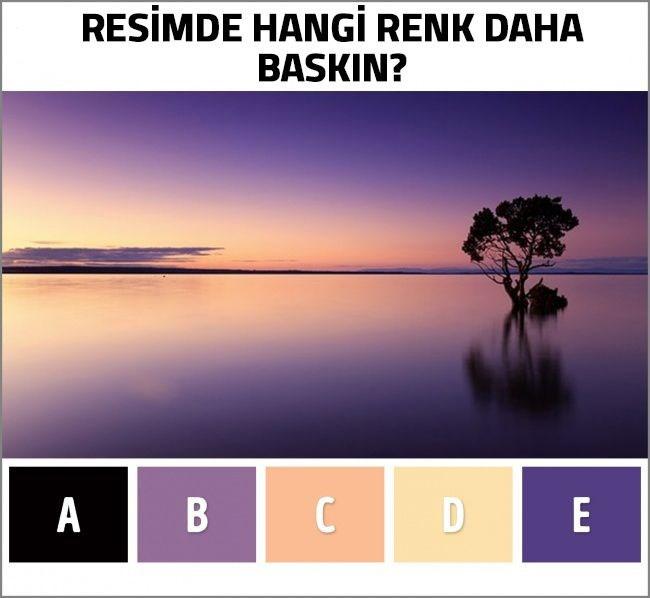 Zihin yaşını ortaya çıkaran renk testi 3.resim