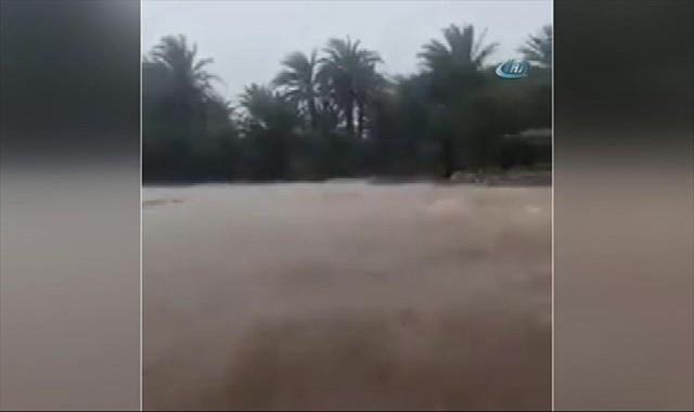 Sokotra Adası felaket bölgesi ilan edildi