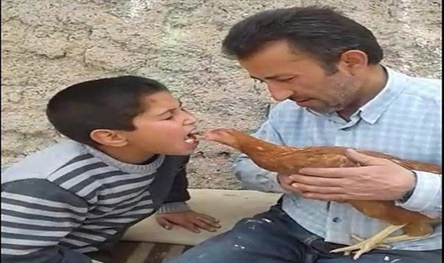 Tavuğu ağzındaki yemle besledi